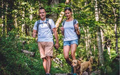 BEST PET TRAILS NEAR GWINNETT COUNTY