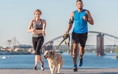 A Guide to Exercising with Your Dog