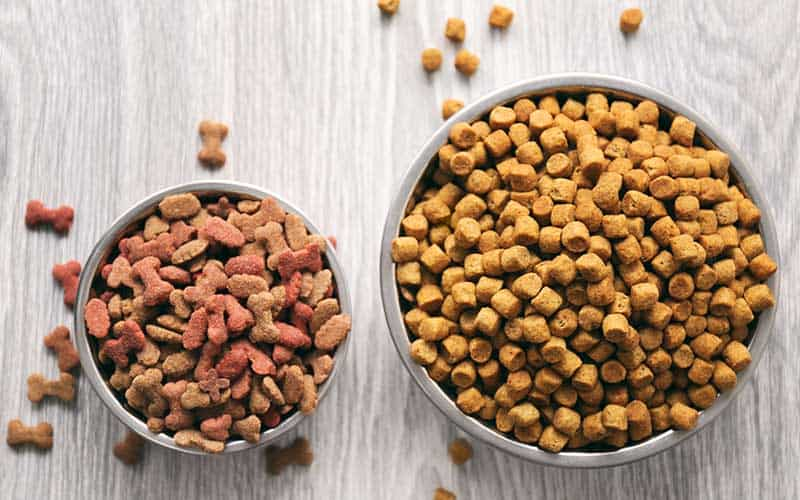 What is Meant by Holistic Dog Food?