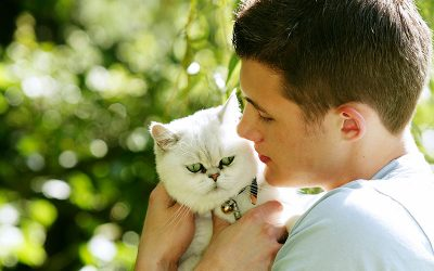 7 Reasons Why We Love Cats